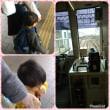 バスと電車でイチョウ並木