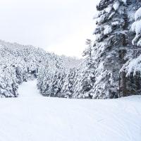 ようやく初スキーへ