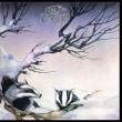 大雪とアライグマ