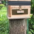 ニホンミツバチの一時疎開作戦