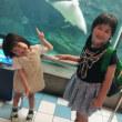 須磨水族館へ