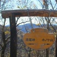 ホノケ山(736.7m)&高頭山(746m)