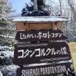 さようなら!…コタンコルクル像