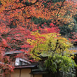 横蔵寺の紅葉 4