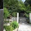 久しぶりに 摩耶山に登りましたが、登山道は様変わりしていました。