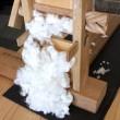 名古屋女子大学の皆様の三河木綿