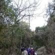 山林境界の確認