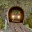 樽見鉄道の旅 日当駅