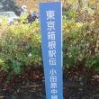 福岡国際マラソン2