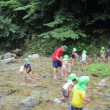 赤名保育所のみなさんの川遊びに参加しました!