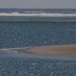 梅ヶ浜の遠く沖合を南下してゆく貨物船  (Photo No.14306)