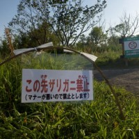 園内にある木道からのザリガニ釣りを禁止とします