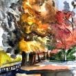 石神井公園の紅葉はまだ真っ盛り