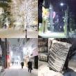 雪の降る街。