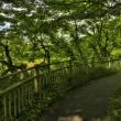 竜田公園/奈良県生駒郡斑鳩町龍田南6丁目