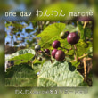 one  day わんわん soap marché リポート