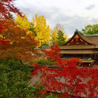 京都人と紅葉(その1)