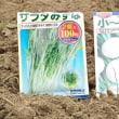 秋の葉物野菜を一斉に播種