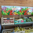 山梨から北アルプスが見えた! 新しく生まれ変わった明野農産物直売所