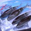 超浮力!Z-MAN レーザーシャッド4.5inレッドボーン  4p