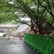 崩壊した熊本城・元太鼓櫓にまつわるはなし。