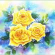 黄色バラ・3輪