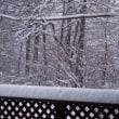 山梨県 大雪予報!速報 清里高原 大雪
