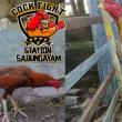 Jadwal Sabung Ayam S128 18 Agustus 2017