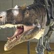 この恐竜は?