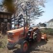 桜満開!農作業全開!