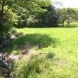鶴見川沿いを歩く;その10 源流を訪ねて