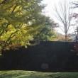 東御苑の秋 -3 ・・・ Autumn in the East Garden of the Imperial Palace -3