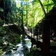 竜化の滝歩道を歩く。