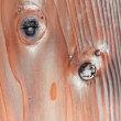 ピカソの杉板