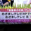 3/20・・・めざましテレビお花プレゼント(本日2時まで)