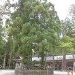 大和の国の一之宮 大神神社を訪ねて