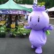 ブルーベリーフェア2010その2!