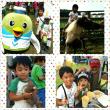 動物愛護フェスティバル