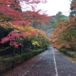 そうだ、京都行こう