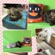 記事メンテナンスします☆「黒ペルシャ猫のクロべエ〜♪」アニメーション貼り方♪知ってますか?
