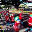 第45回JALホノルルマラソン (*´х`*)
