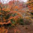 奈良・高取山