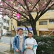 桜台桜祭り
