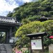 鎌倉ショートトリップ 高徳院&安養院