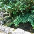 富山の水場2箇所!