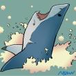 ホホジロザメ描いてみた