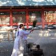 初辰詣で 1月12日(金)晴れ