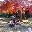 法界寺の紅葉と幼児たち
