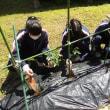 5月21日(月) 技術「植物の育成」