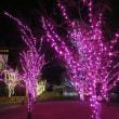 Gifu / X'mas illumination ( クリスマス・イルミネーション)